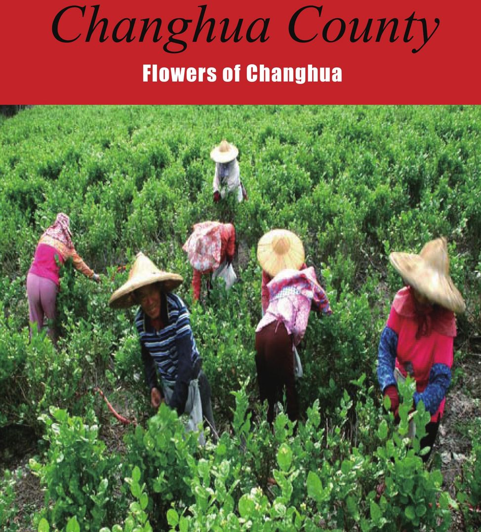Flowers of Changhua