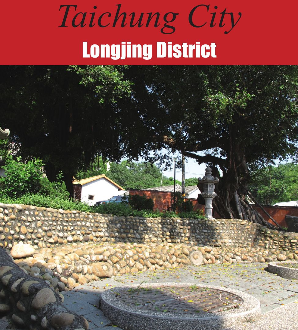 Longjing District