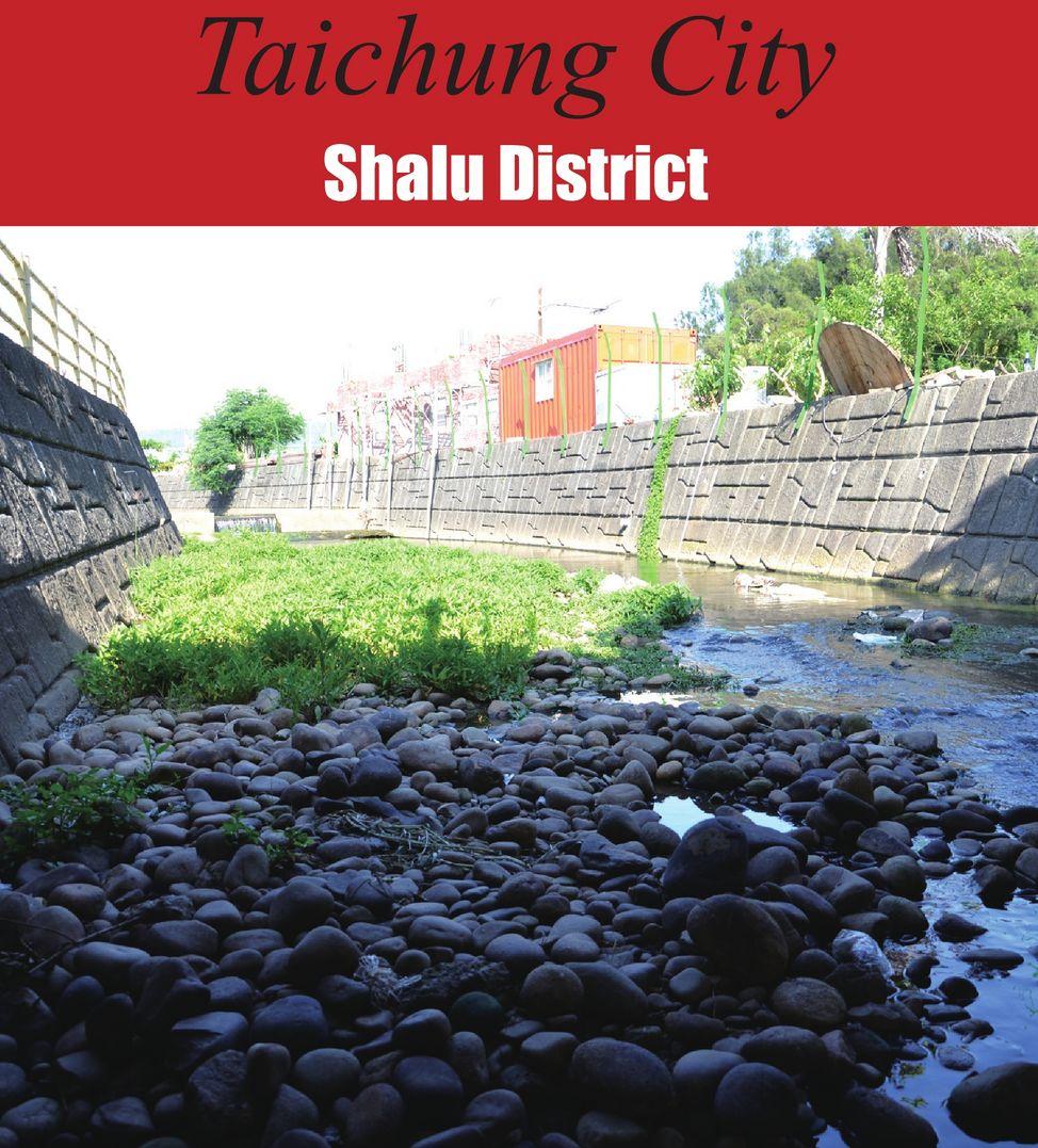 Shalu District
