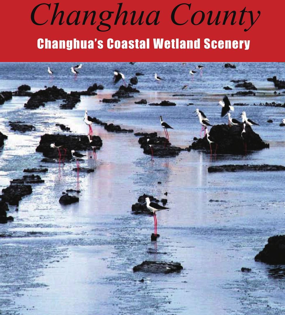 Changhua's Coastal Wetland Scenery